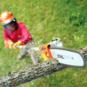 Stihl Extended Pole Saw model HT 101